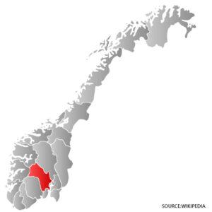 buskerud kart Buskerud Kart   Norge veikart   Detaljert kart med gater buskerud kart